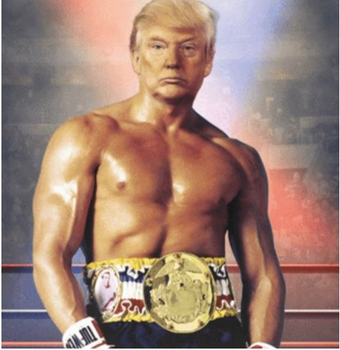 Donald Trump as a boxer to fight bloomberg
